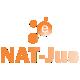 Acessar a página: e-Nat-Jus
